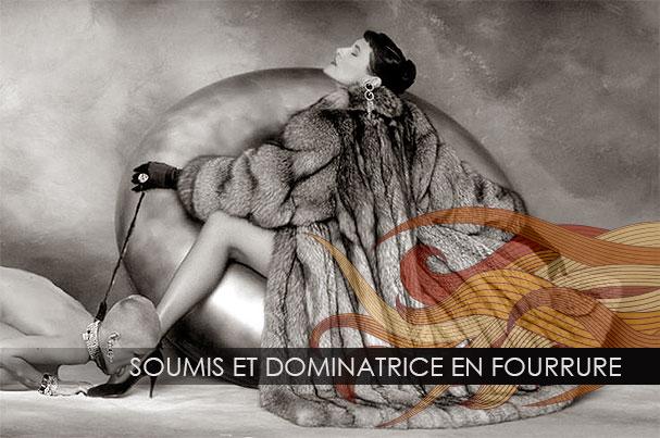fourure