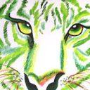 Profielfoto van Groene Tijgertjes
